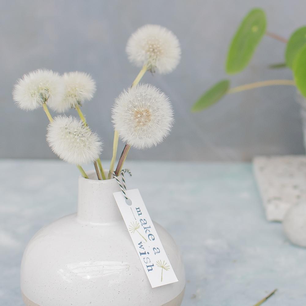 Pusteblumen haltbar machen für die Vase